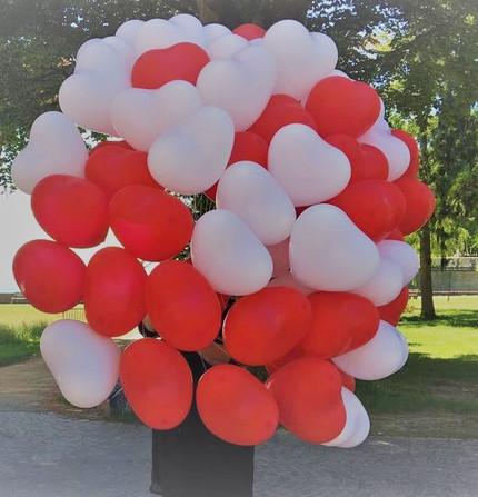 Herzballons.JPG