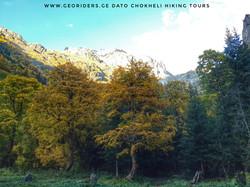 Svaneti, autumn time view of Ushba