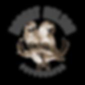 Logo-oficial-robert-nelson-baixa.png