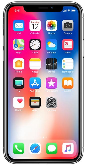 IPhone X 256GB Libre Garantía