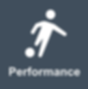 Performance Icon.png