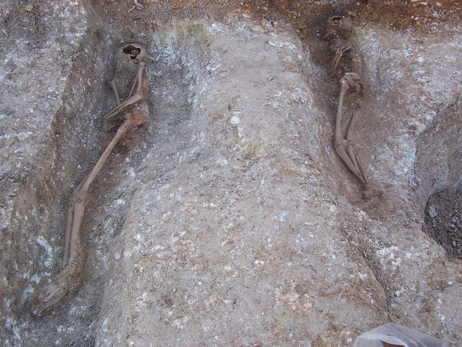Esquelets en posició lateral