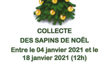 COLLECTE SAPINS NATURELS DE NOËL