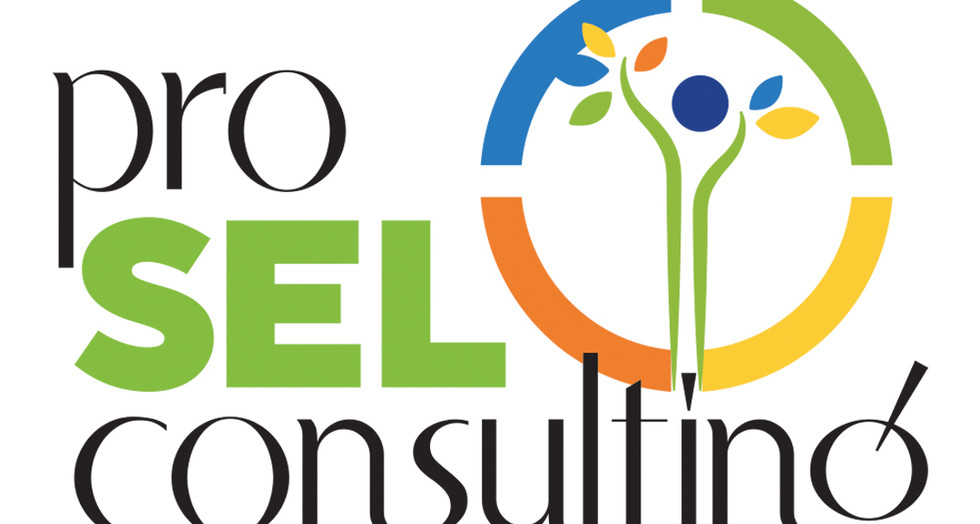 Pro SEL Consulting