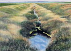 """The Grass is Greener Still"""