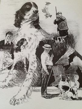 jim-the-dog-11.jpg