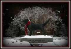 Freezing Fog Jim statue.jpg