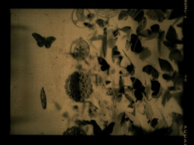 floristeriasinflores21.jpg