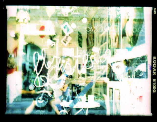 floristeriasinflores01.jpg