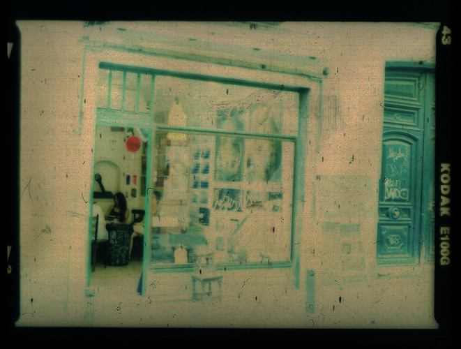 floristeriasinflores17.jpg