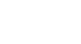 DriveItHomeAutos-Logo-final-wh.png