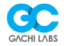 가치랩스 큰 로고.jpg