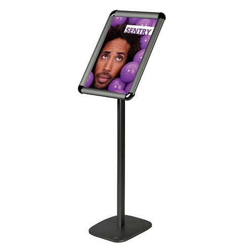 Sentry Free Standing Poster Display