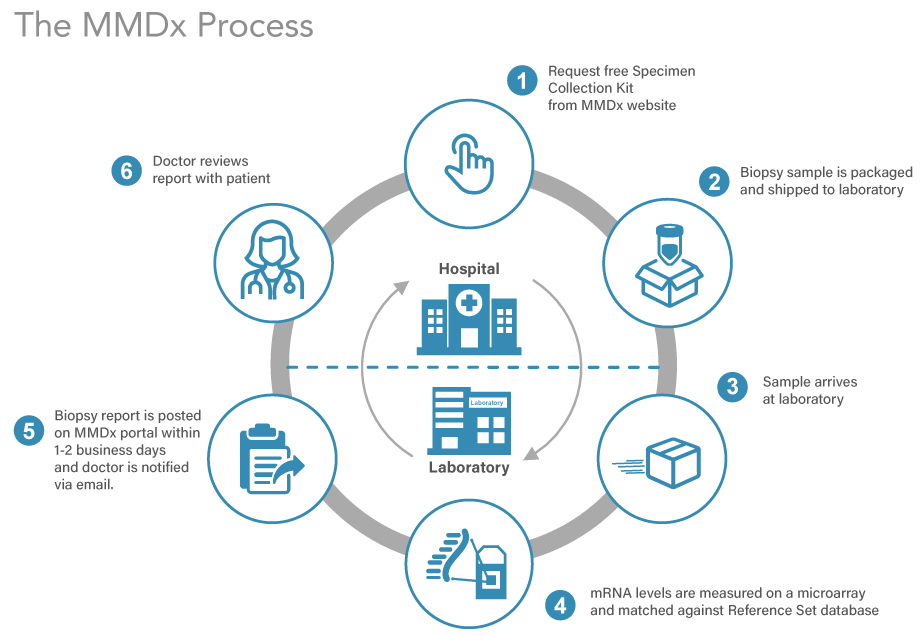 The MMDx Process infographic