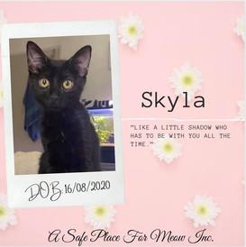 Skyla