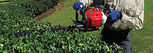 RedMax-Hedge-Trimmers-970x335.jpg
