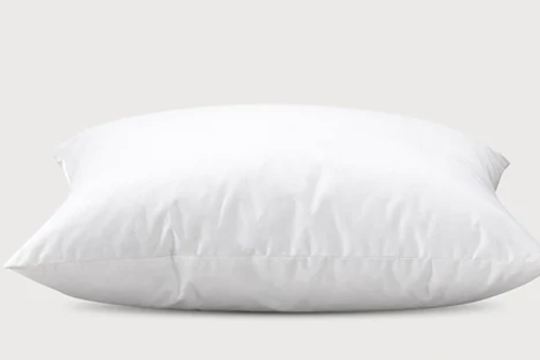 600 Excelsior Pillow
