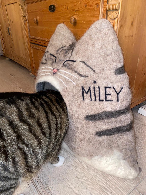 Miley auf der Reise zu sich selbst