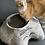 Thumbnail: Das Katzencabrio