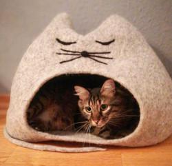 Katzenhöhle MAUS