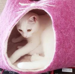 Katzenhöhle BARBIE