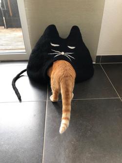Katzenhöhle BLACKIE