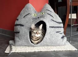 Lilly's Höhlentag