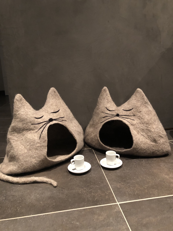 Katzenhöhle'EDDIE'
