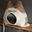 Thumbnail: LEO rotbraun-weiß - sofort versandbereit