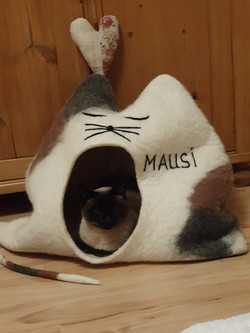 Mausi versteckt sich