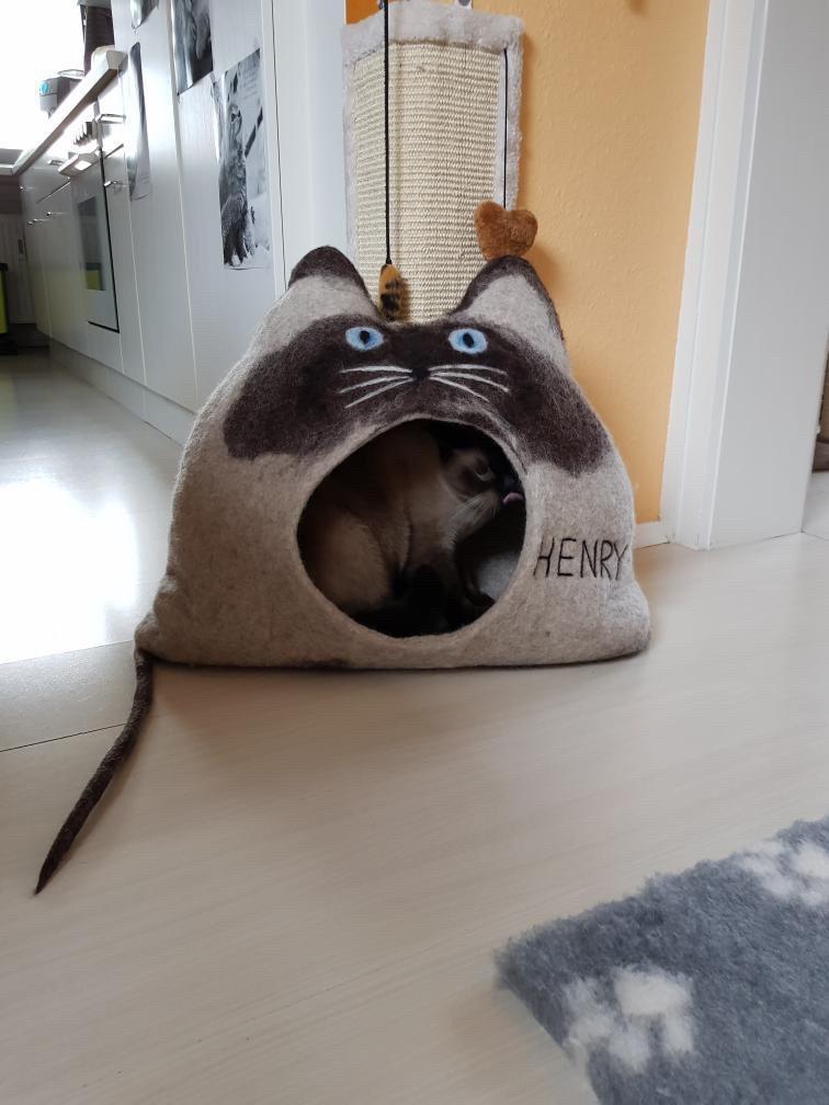 """Henry in seiner Höhle """"Henry"""""""