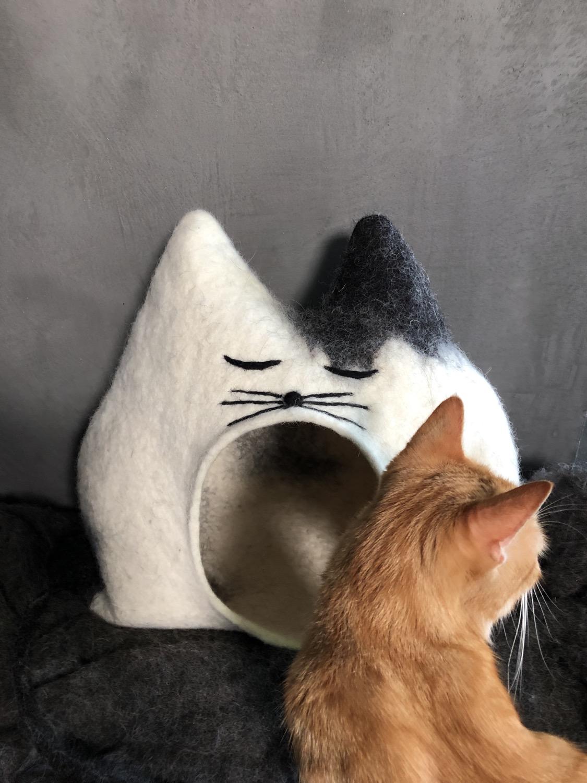 Katzenhöhle Flecki