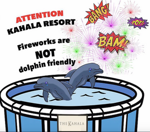 animal cruelty dolphin swim kahala resort