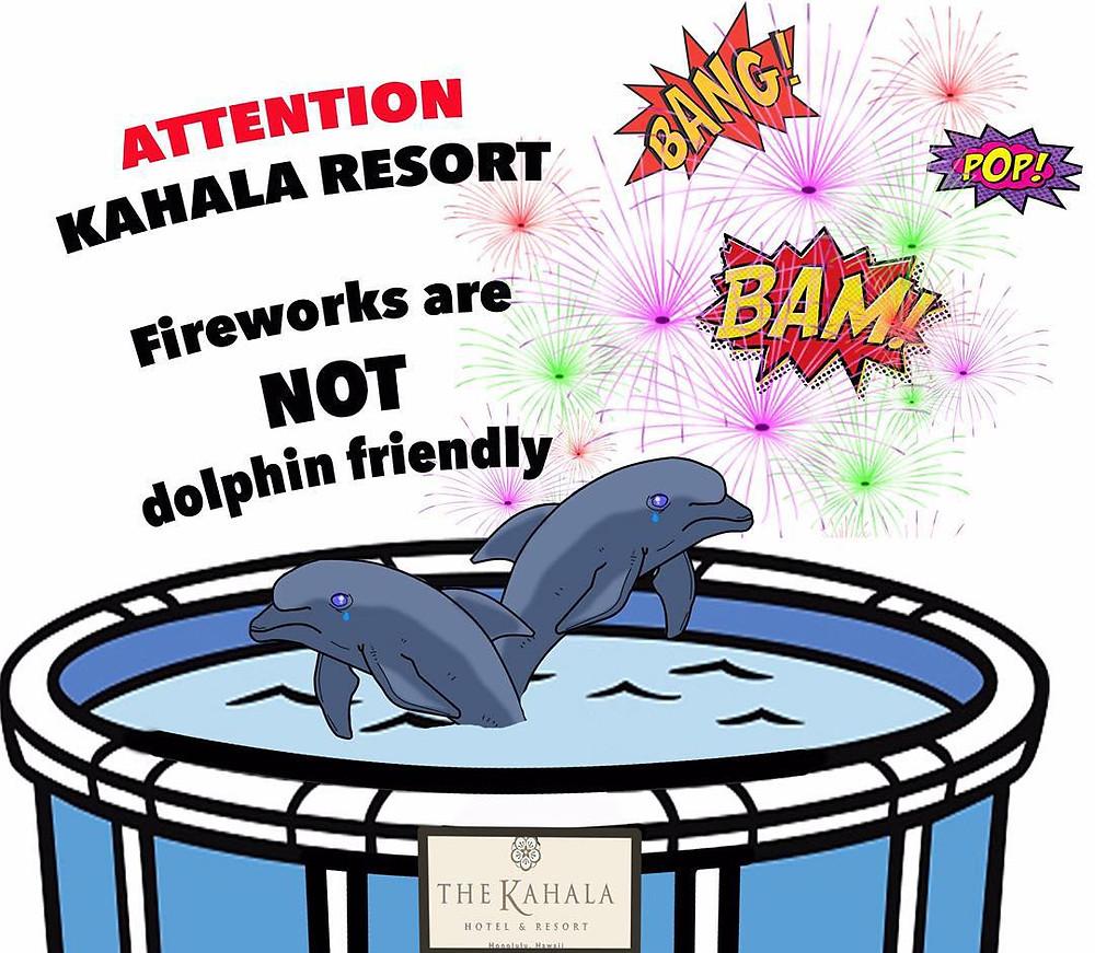 kahala resort dolphin quest cruel fireworks captive dolphins