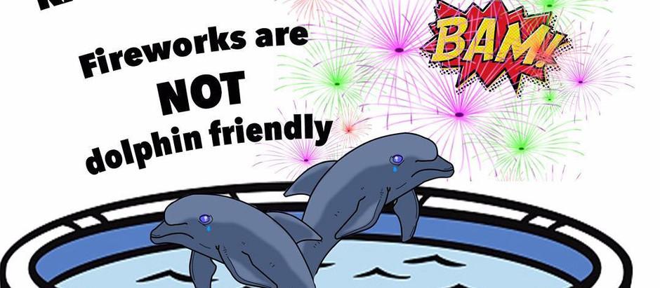 Testify Against Kahala Resort's Firework Application