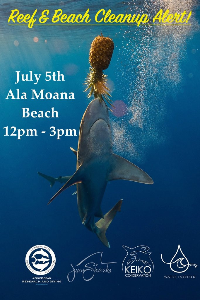 Ala Moana Beach Cleanup Keiko Conservation One Ocean Conservation