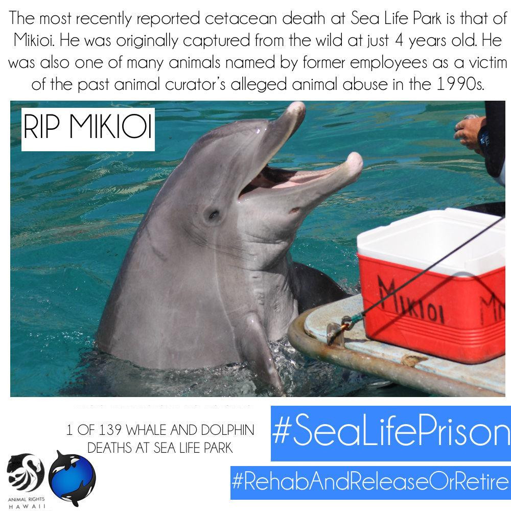 Mikioi Sea Life Park Hawaii Animal Cruelty
