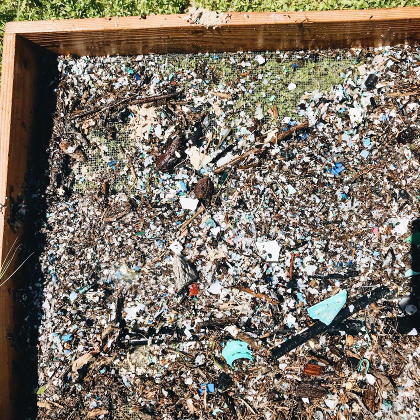 Plastic Hawaii Pollution Marine Debris