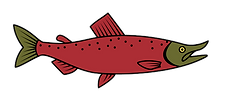 Free_Salmon_Vector.png