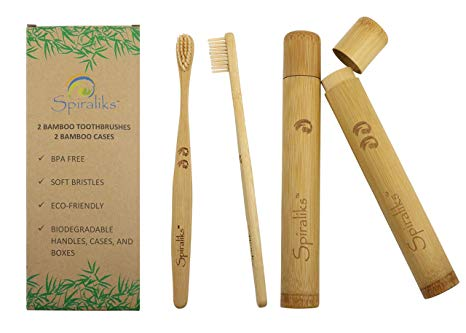 Ecofriendly Sustainable Plastic Free Travel Toothbrushes