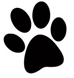 Dog Paw Graphic.png