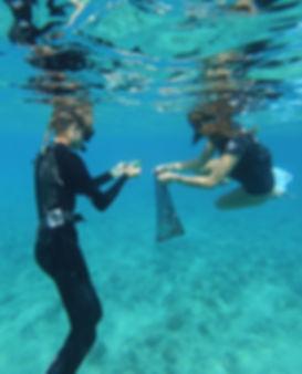 Siena Schaar Janelle Van Ruiten Keiko Conservation Reef Clean