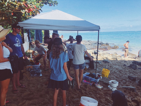 Keiko Conservation One Ocean Diving Water Inspired Reef And Beach Cleanup Makai Pier Hawaii