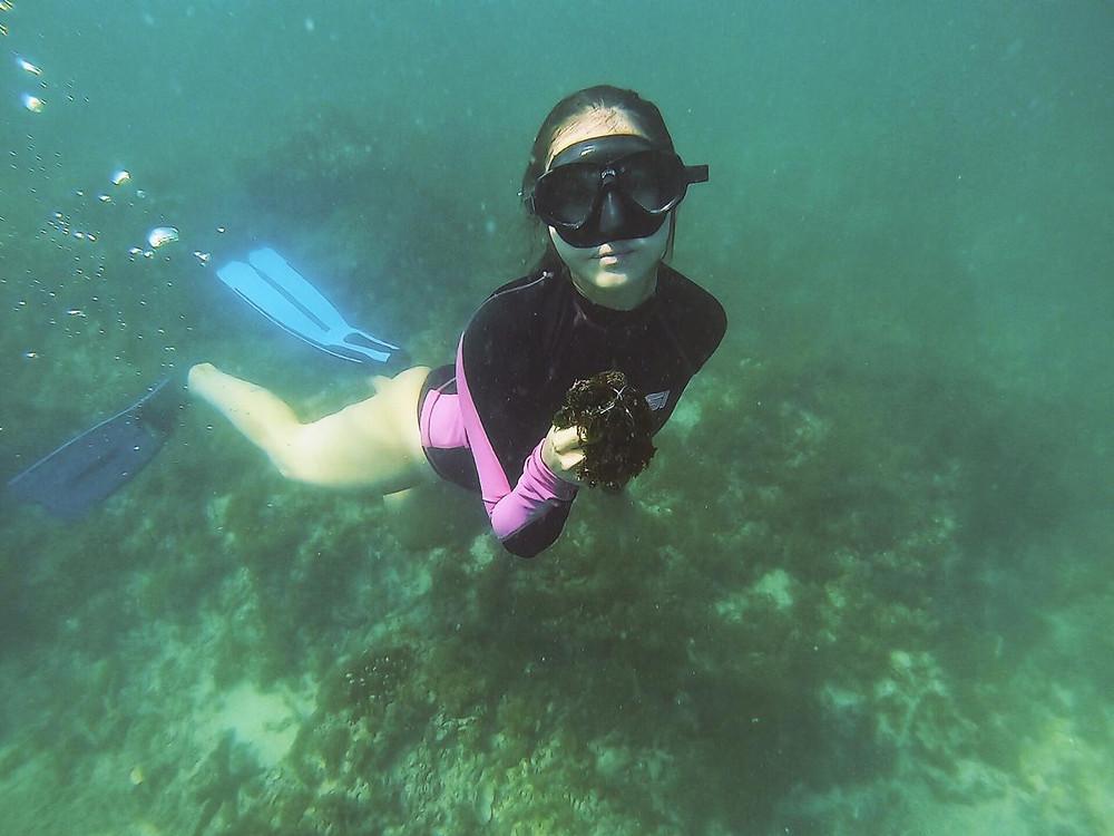 Keiko Conservation Ecuador Reef Cleanup Maria Gracia Gonzalez