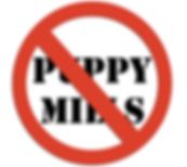 Anti-Puppy Mill Graphic.png