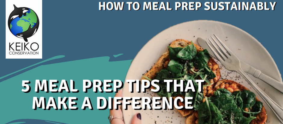 5 Meal Prep Tips That Make A Difference