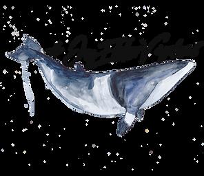 Whales Norwegian.png