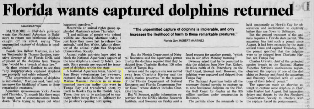 Jay Sweeney dolphin quest wild captures
