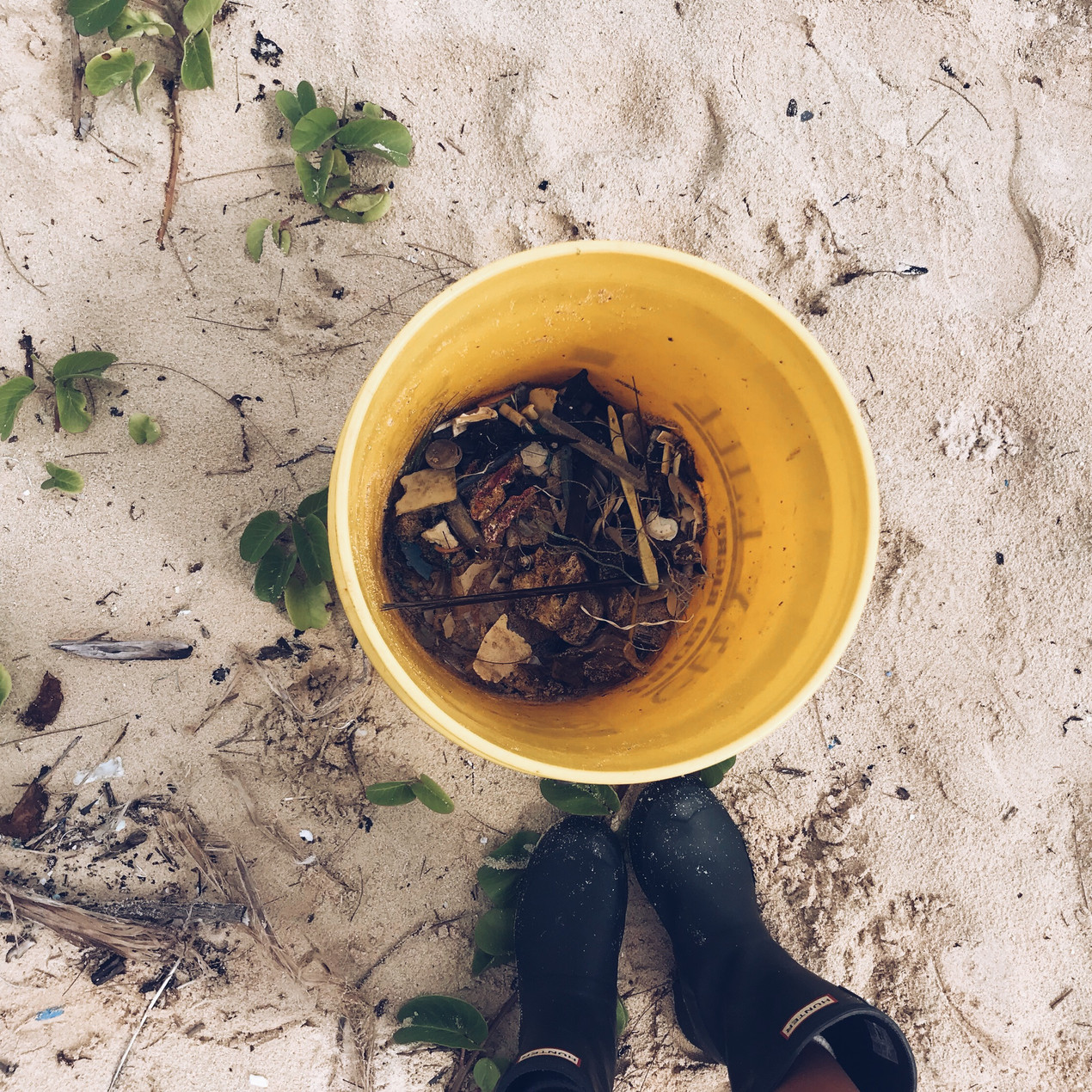 Siena Schaar waimanalo keiko conservation one ocean conservation water inspired microplastics #nerdsagainstnurdles clean up oahu