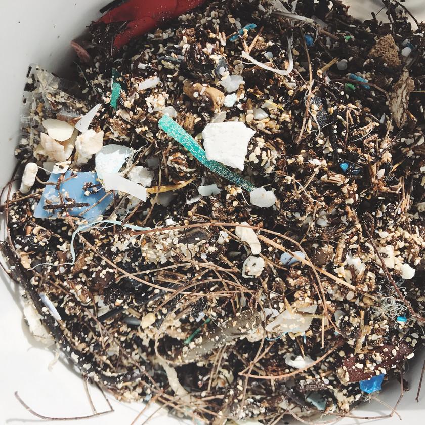 #NerdsAgainstNurdles Waimanalo Beach Clean Up Keiko Conservation One Ocean Conservation
